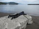 山喜旅館近くの海岸で撮影
